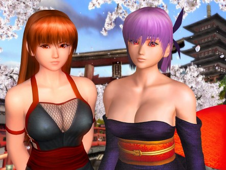 Tecmo Koei is Primed to Engage the Wii 2 and NGP