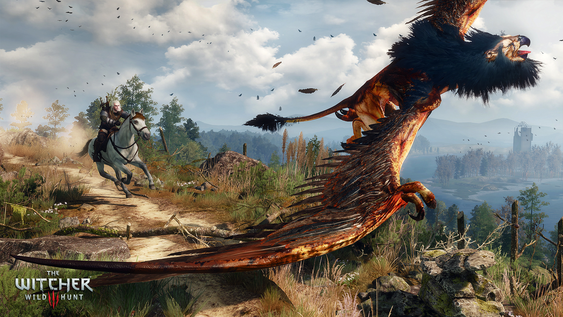 Image result for the witcher 3 combat