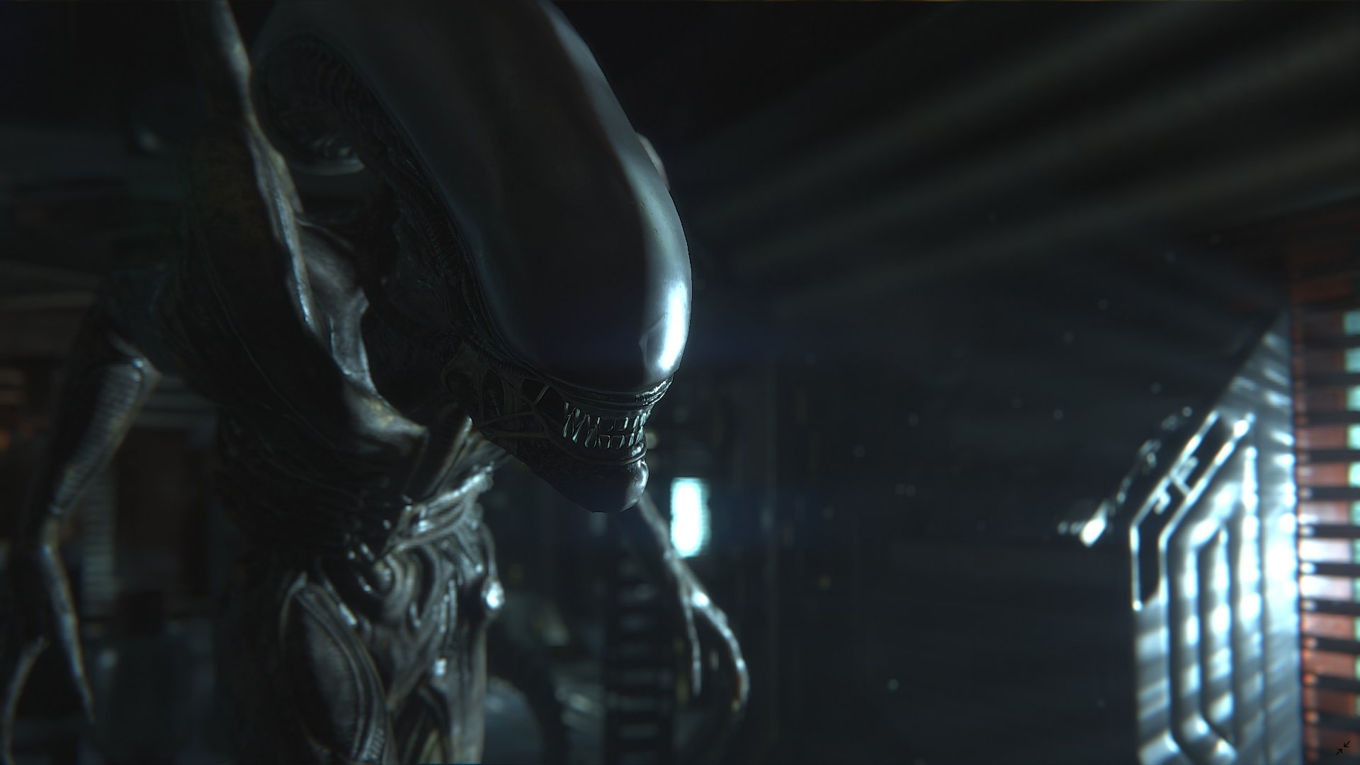 Where is Xenomorph in Fortnite – How to Get the Alien Skin