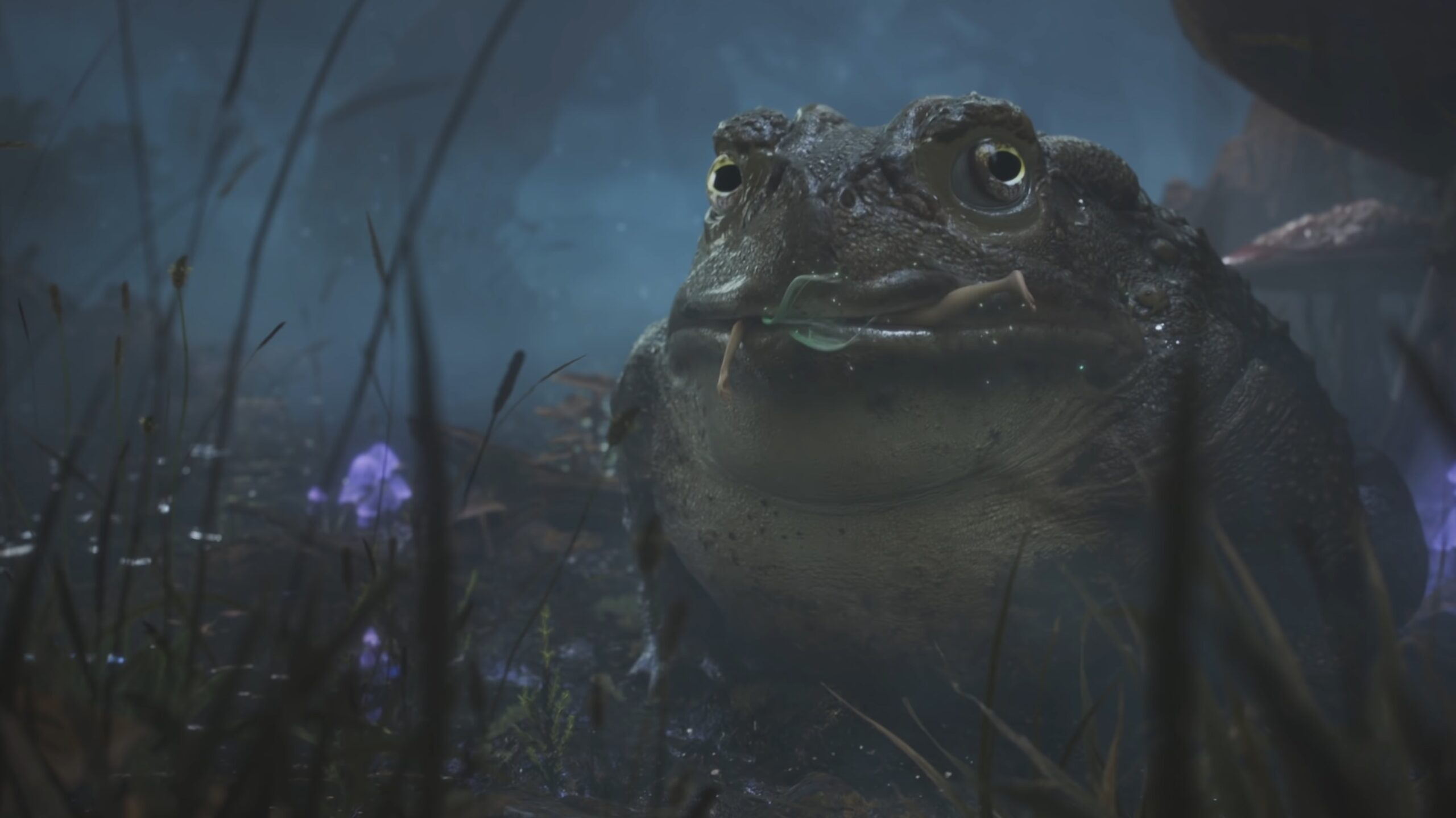 Fable Playground Games Trailer still of toad